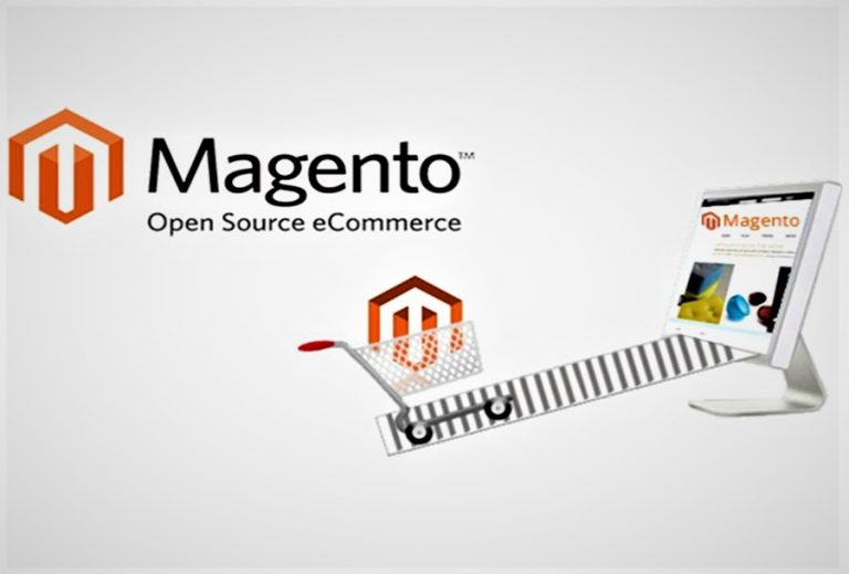 How Magento Web Developer Provide Best Solution for Your eCommerce Website?